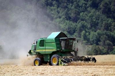 Unió de Pagesos rebutja la nova normativa europea per acabar amb la producció d'aviram en gàbies